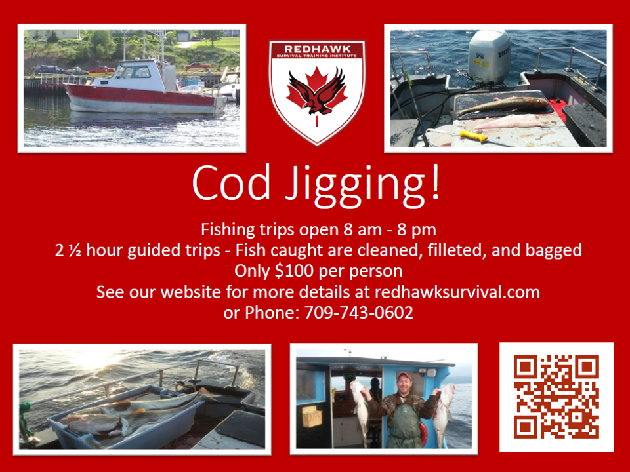 Download Cod Jigging Poster